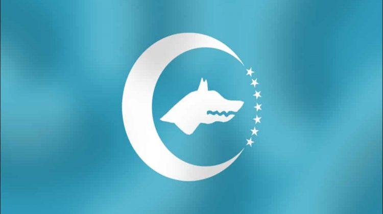 Turk Birligi