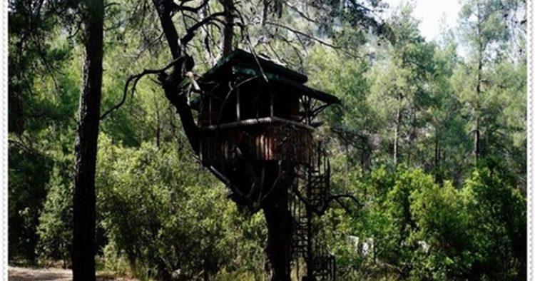 10. Güllük Dağı (Termessos) Milli Parkı (Antalya)  Akdeniz Bölgesi'nde Antalya ili, Korkuteli ilçesi sınırları içerisinde ve Toros Dağları üzerinde yer almaktadır. Antalya'ya 34 km uzaklıkta olup, Antalya-Korkuteli karayolu ile ulaşılır. Milli park; antik Termessos şehri kalıntıları, Güllük Dağı'nın değişik jeolojik ve jeomorfolojik oluşumları, Akdeniz bitki topluluklarının sergilendiği orman ve maki toplulukları, zengin fauna gibi doğal ve kültürel pek çok özellikleri ile görülmeye değer bir sahadır. Antik Termessos şehri kalıntıları günümüze kadar en iyi şekilde korunarak ulaşabilmiş eserlerdendir. Milli parkta tabiatın sunduğu bütün zenginlikler, güzellikler ve Termessos şehri, surları, kuleleri, kral yolu, Hadrian Kapısı, gymnasium, tiyatro, odeon, zengin süslemeli mezarlar, sarnıçlar gezilebilir. Milli parkı ziyaret için en uygun zaman Nisan-Aralık aylarıdır. Milli park içerisindeki idare merkezi, her türlü donanımıyla ziyaretçilere park hakkındaki bilgileri verebilecek şekilde hizmet vermektedir. Burada rekreasyonel faaliyetlerden doğa yürüyüşleri tercih edilirken, piknik imkanı da söz konusudur. Kırgazinosu günübirlik aktivitelere hizmet vermektedir. Milli parkta düzenlenmiş piknik ve kamp alanlarından faydalanılabilir.