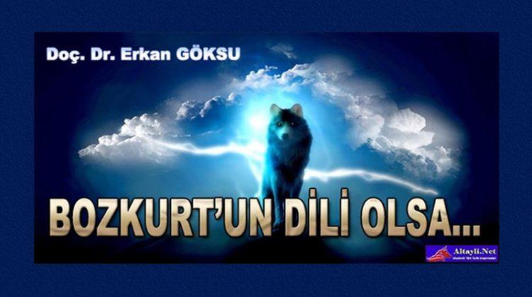 Erkan-Goksu-001